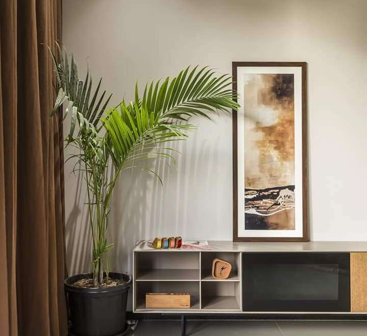 What is Residential Interior, Vaastu designing and why to hire a designer